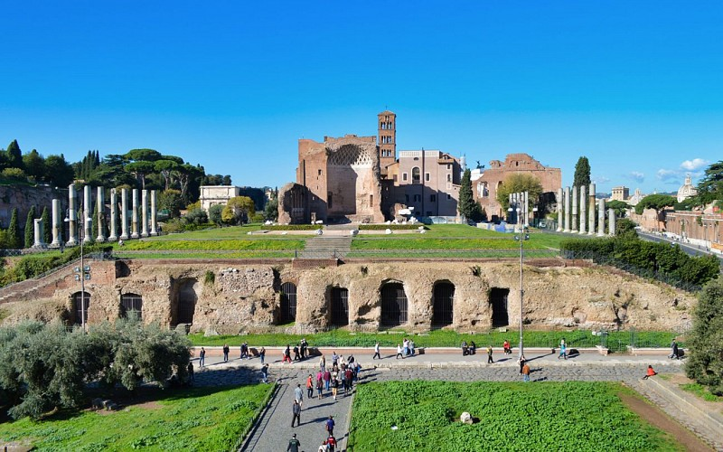 Guided Walking Tour of Rome with Colosseum, Roman Forum and Palatine Hill