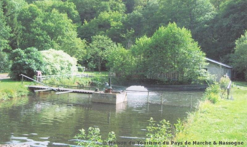 Masbourg - Pisciculture-pêcherie de la Masblette