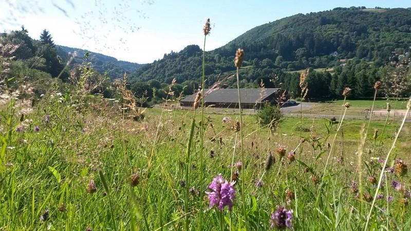 Les Ecuries du Nord Cantal