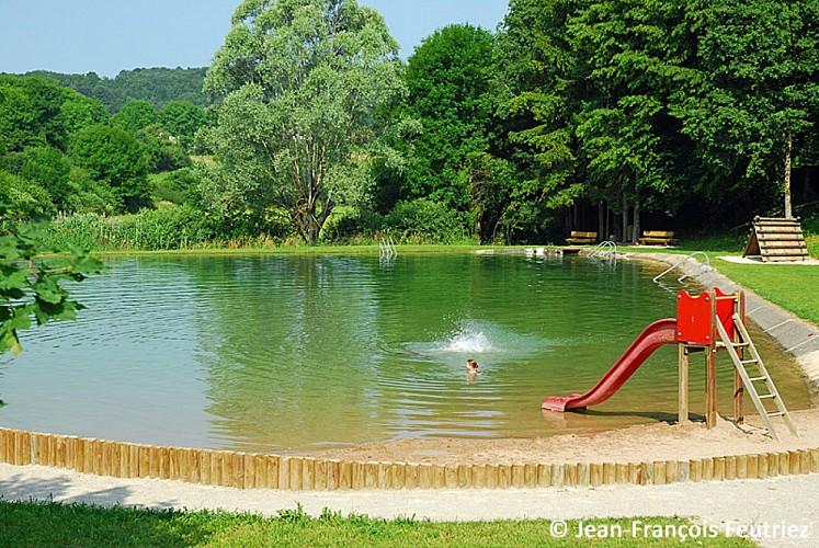 Les étangs de la Juchère