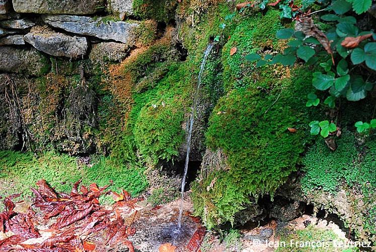 Le mausolée gallo-romain de Faverolles