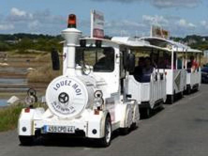 LE PETIT TRAIN DES MARAIS SALANTS