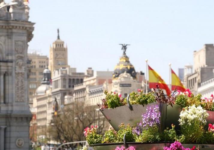 Tour privé en segway au Parc du Retiro  à Madrid – en français
