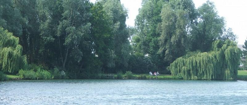 Le Lac d'Armbouts-Cappel, réserve ornithologique et base de loisirs