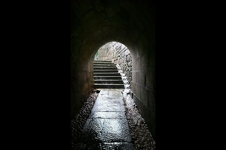 3. THE TUNNEL OF THE ENCLOSED ONES