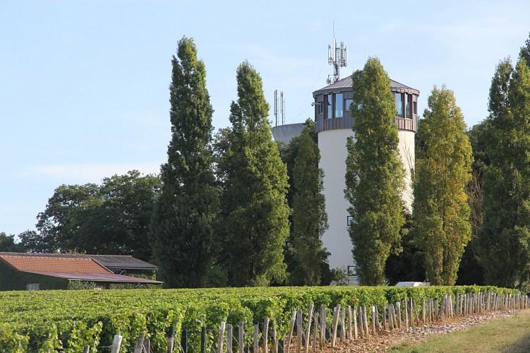 Belvedere de Saint-Andelain