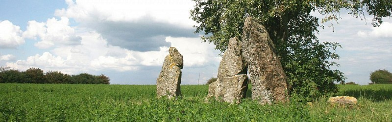 The three dolmens of Oppagne