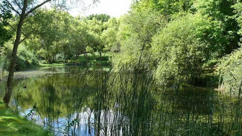 Entrer dans le Parc Georges-Valbon