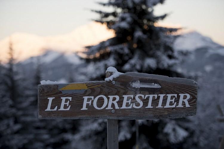 Chalet Le Forestier