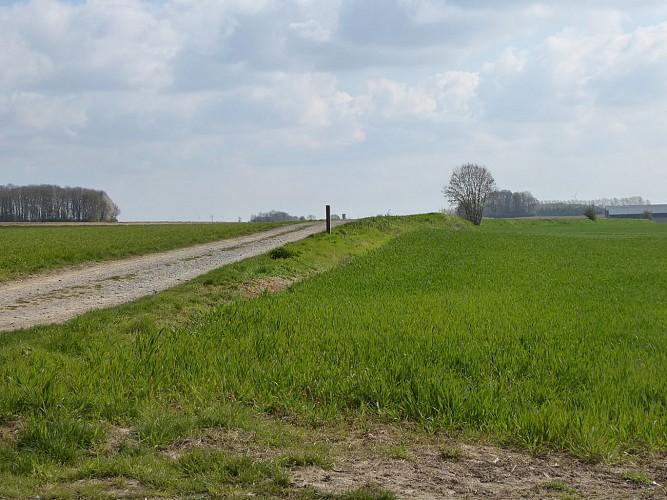 Ancienne chaussée romaine