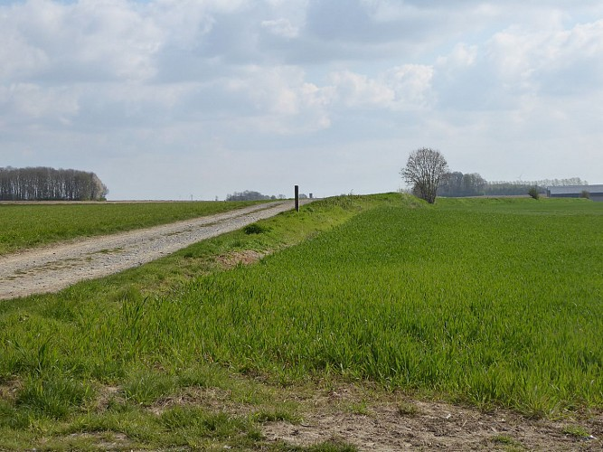 Oude Romeinse heerweg