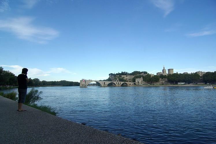 Brücke von Avignon