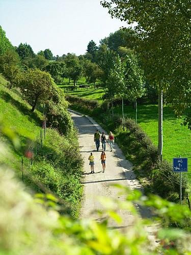 """Montagne Saint-Pierre """"A pied ou à vélo entre Geer et Meuse"""""""
