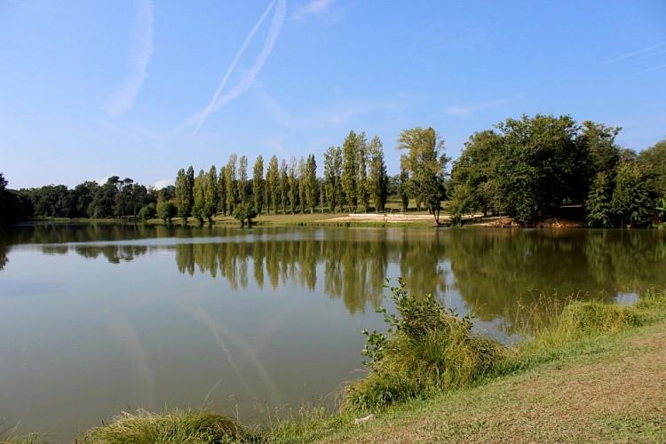 OT-Lac de Luc Pouillon