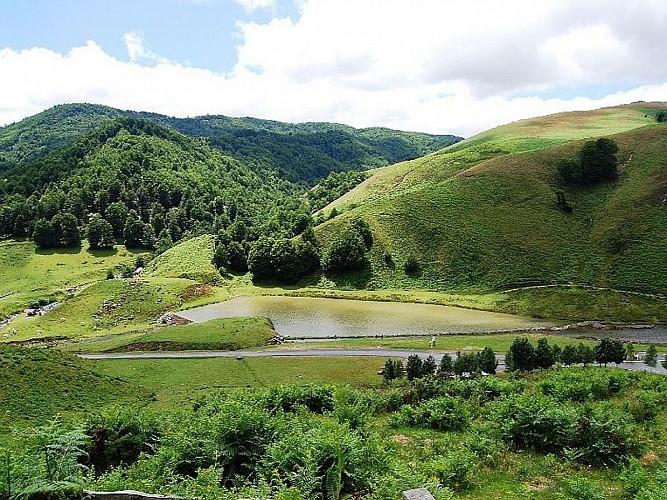 Forêt Iraty - lac - Maité Harlouchet