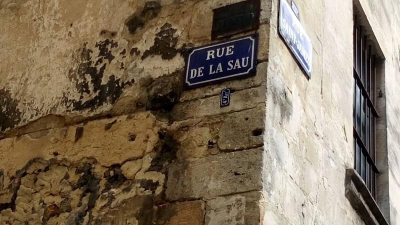 Carrèira de la Sau /Rue de la Sau