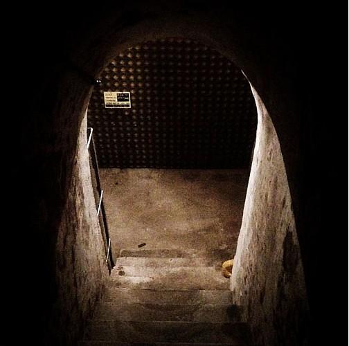 Champagne Didier Herbert - Visite de cave et dégustation de 3 Champagnes