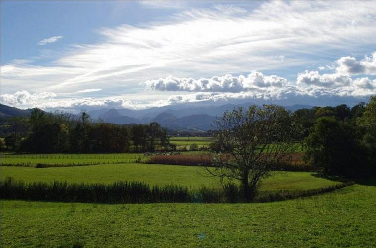 Ecuries-de-Soule-paysage