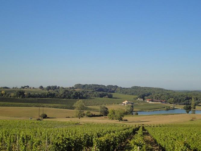 Vallée - Château Pique-Sègue