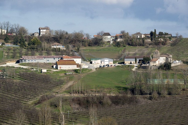 Vignal (1)