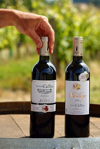 Domaine-Calbo--Albret-Tourisme-30-