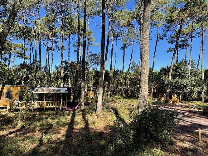 Green-Resort-2-2019-TS