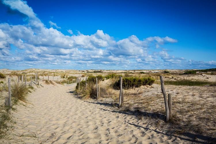 plage-oceane-biscarrosse