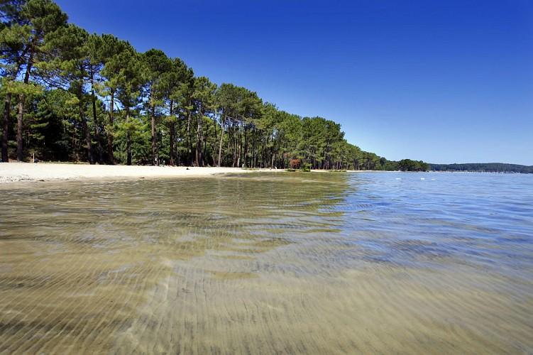 Bisca-plage-lac