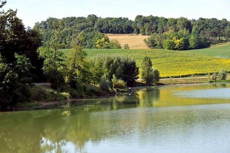 bajamont-vue-lac-peche-destination-agen-tourisme-2