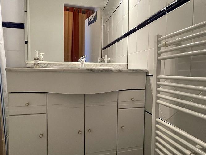 Appartement Poulet - Salle d'eau 01