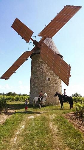 Blaignan - Moulin à vent de Courrian