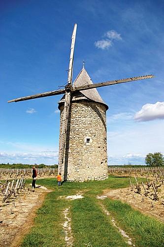 moulin blaignan2