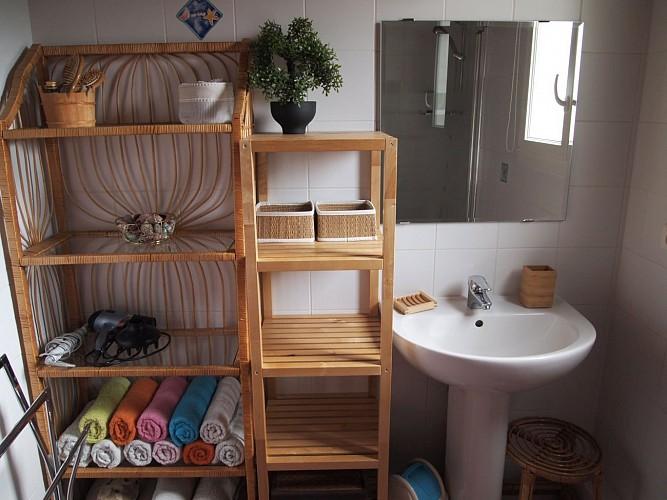 Maison Villanueva - Salle de bain 1 (Sara Estoueigt)