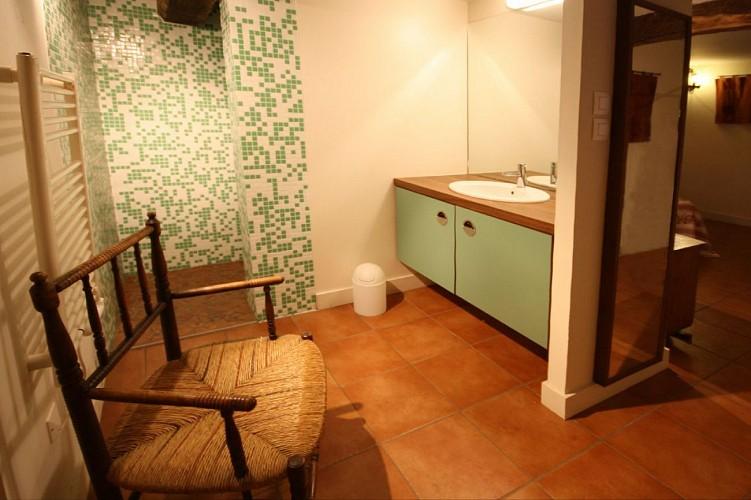 salle-de-bain-rdc-appartement-xoriekin-masion-lacotaenia-laurence-joppin