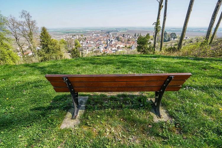 Parc Vix - Avize