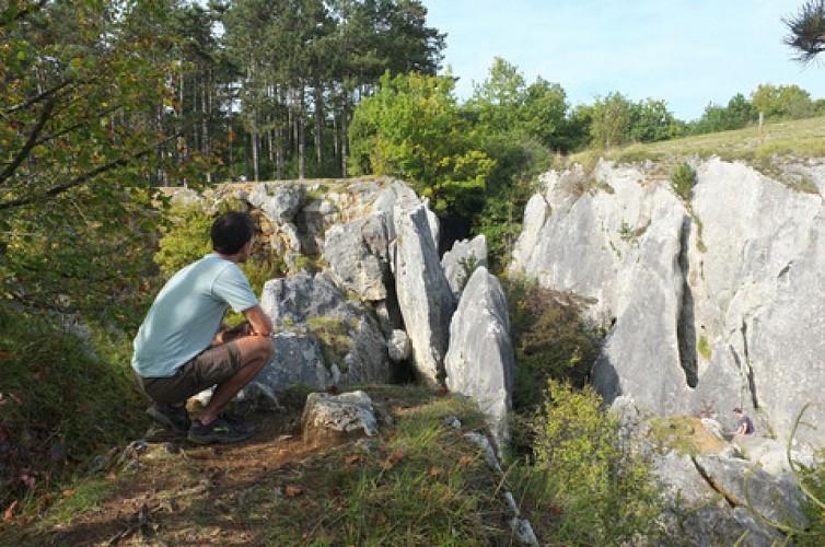 Le Fondry des Chiens et son gouffre impressionnant à Nismes