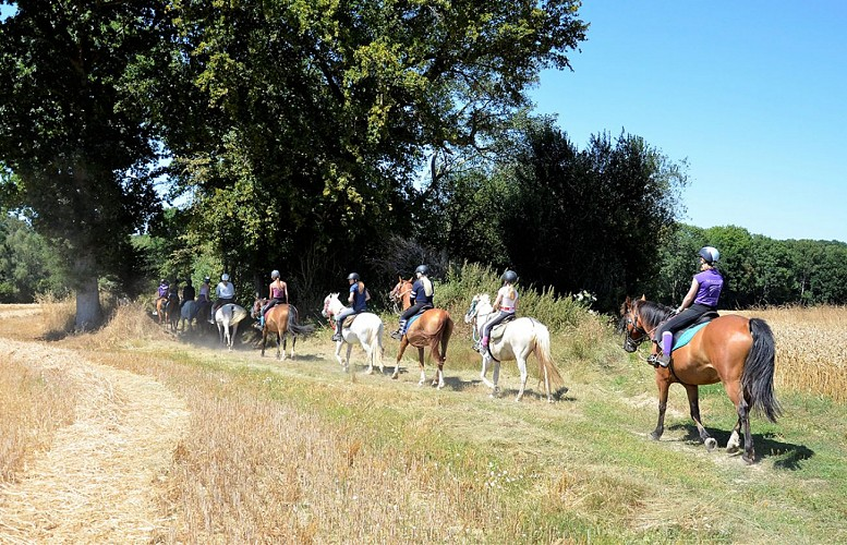 Riding stable of the Vièvre