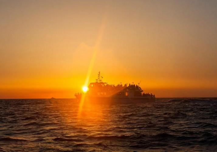 Croisière aux Îles Sanguinaires au coucher du soleil avec dégustation de vin et de produits du terroir – Au départ d'Ajaccio et Porticcio