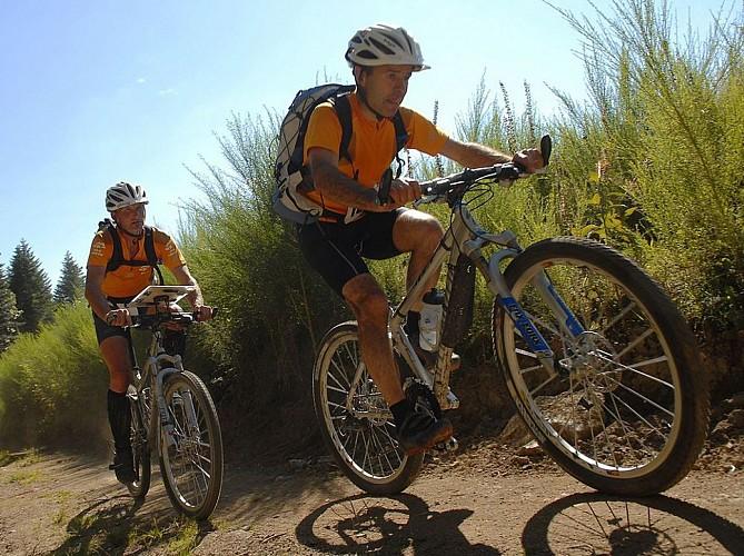 MTB & Hybrid Bike Base