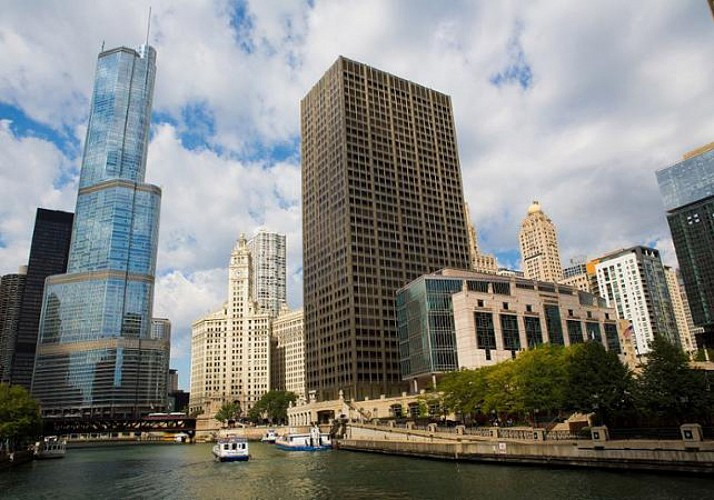 Guided Tour of Chicago by Minibus and by Foot – Full tour of the North and South Sides