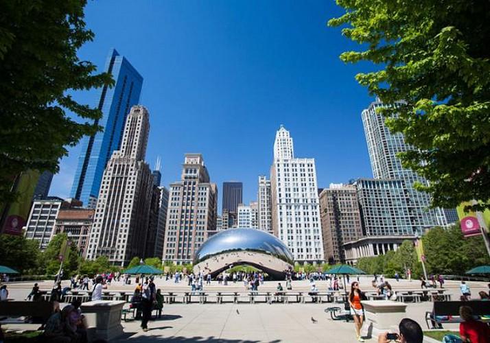 Visite guidée de Chicago en minibus et à pied – Tour complet des quartiers Nord et Sud