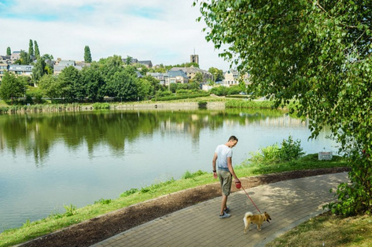 Le lac de Louvain-la-Neuve, poumon vert dans la ville universitaire
