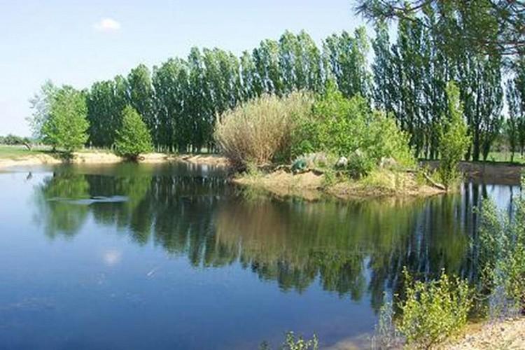 Gîte n°30G10993 – LA ROUVIERE – location Gard