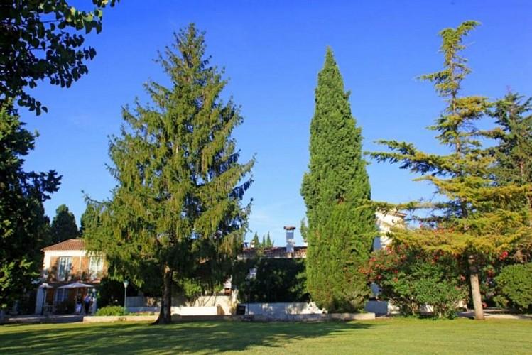 HACIENDA Jardin