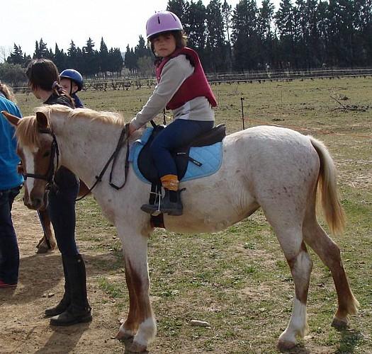 Esprit cheval