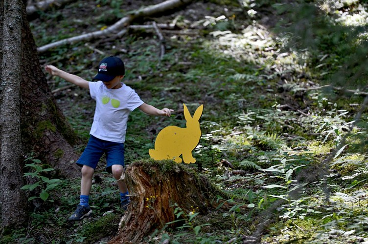 """Animal trail """"Animal Hide n'Seek"""""""