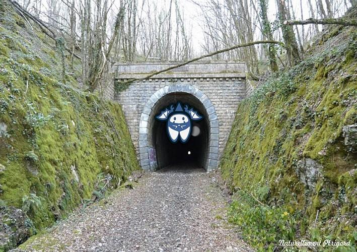St-Raphael-entree-tunnel-S