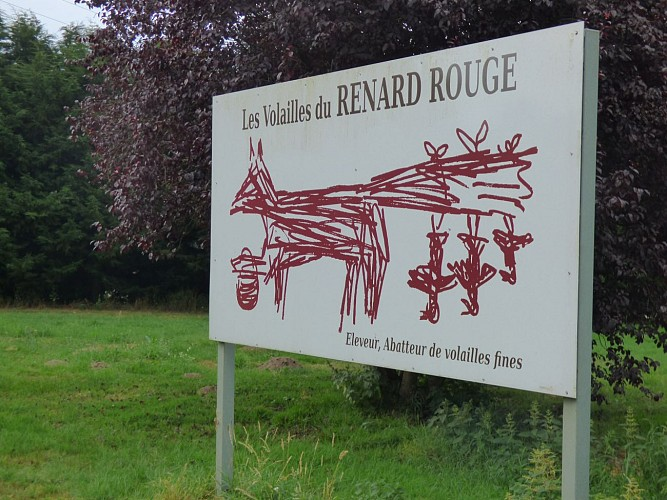 entreprise Renard Rouge.JPG_1