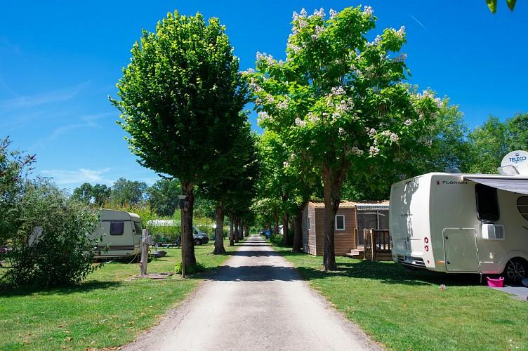 Le Flower Camping de La Venise Verte à Coulon