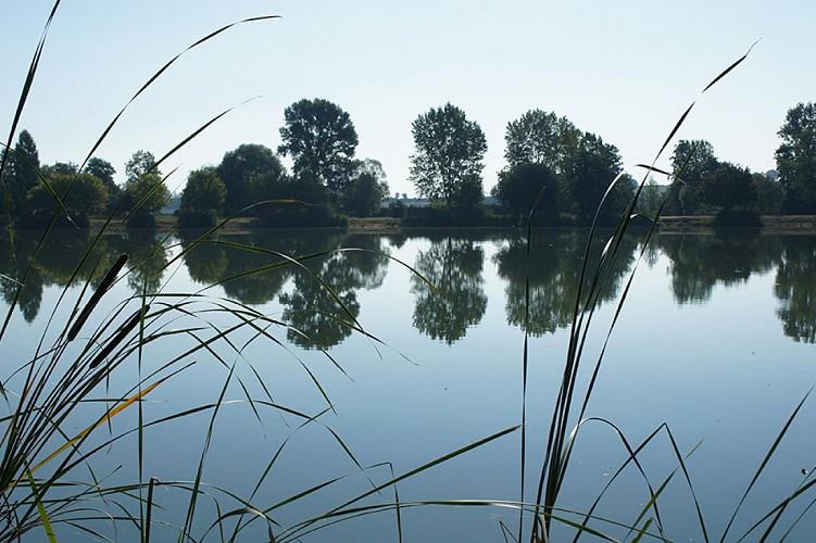 Plan d'eau la Ballastière loisirs Saint martin de sanzay Thouarsais compresse2.jpg_2